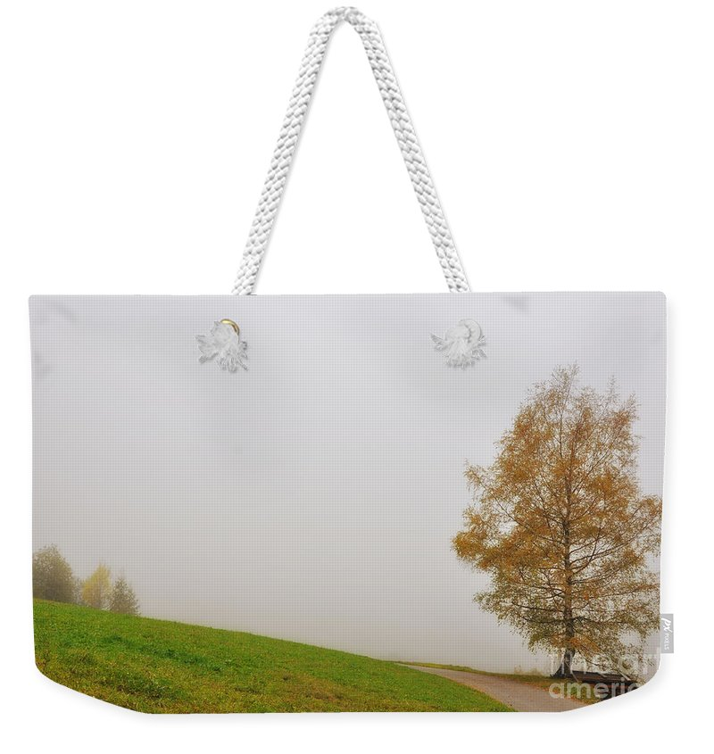 Tree Weekender Tote Bag featuring the photograph Tree In The Fog by Mats Silvan