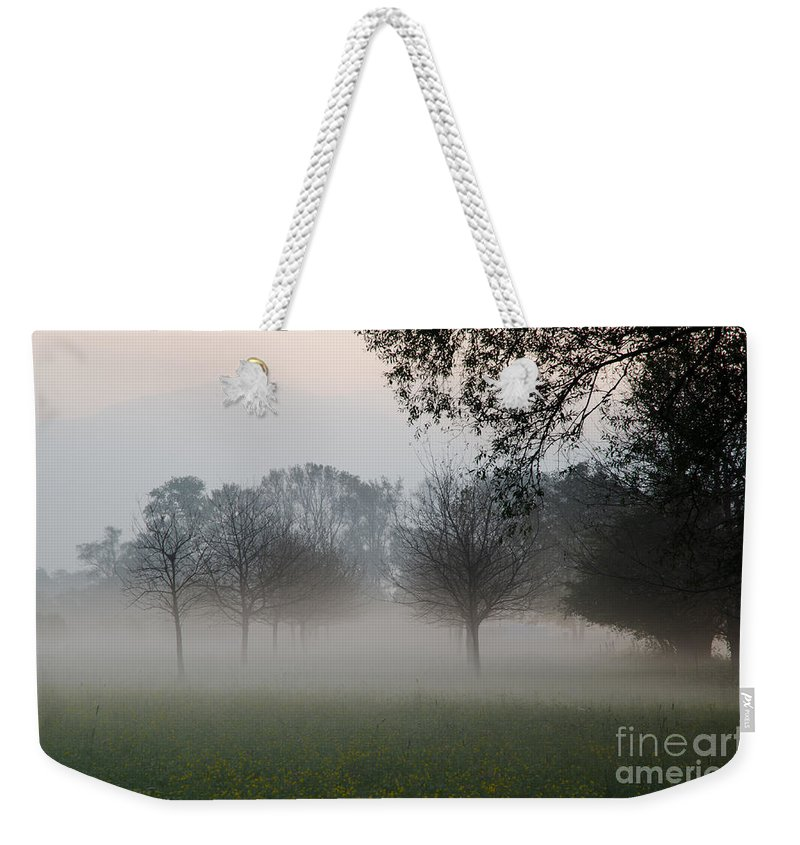 Trees Weekender Tote Bag featuring the photograph Trees And Fog by Mats Silvan