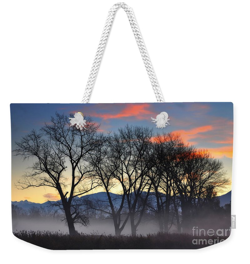 Trees Weekender Tote Bag featuring the photograph Trees With Fog by Mats Silvan