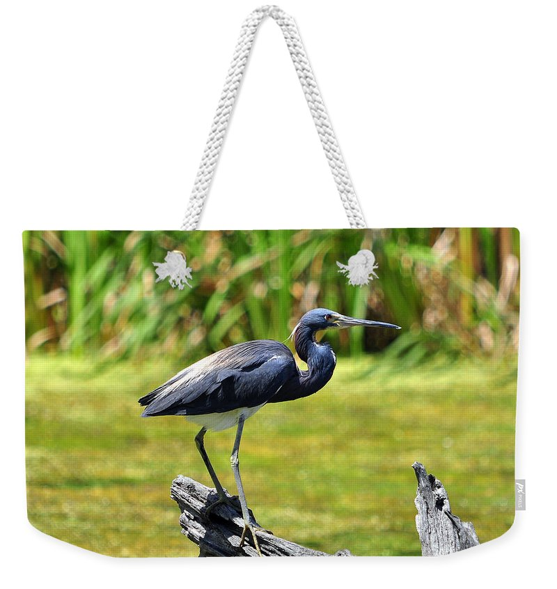 Heron Weekender Tote Bag featuring the photograph Tricolored Heron by Al Powell Photography USA