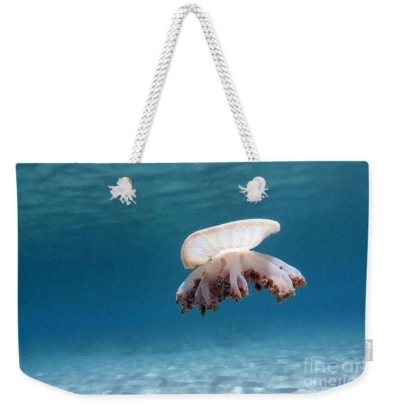 Upside Down Jellyfish In Caribbean Sea Weekender Tote Bag