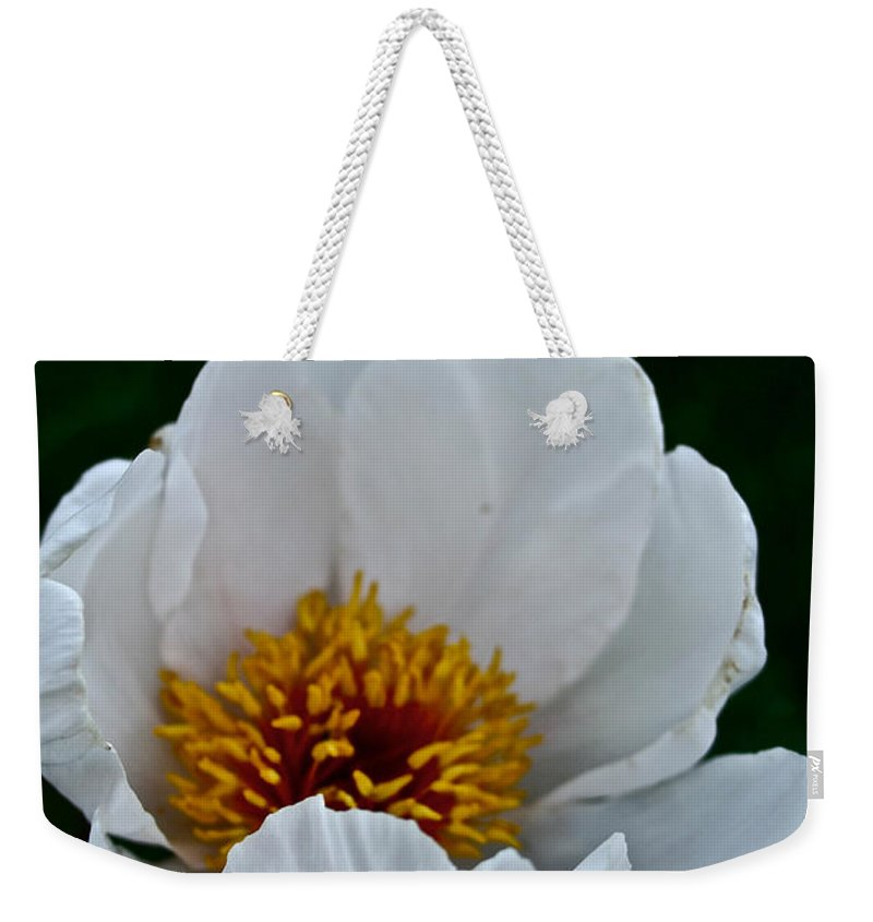 Plant Weekender Tote Bag featuring the photograph White Petals by Susan Herber