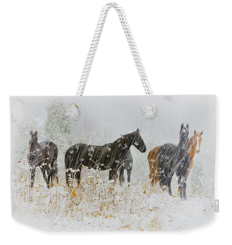 Ron Jones Weekender Tote Bag featuring the photograph Winter Horses by Ron Jones