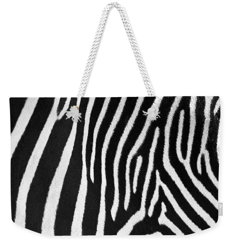 Zebra Weekender Tote Bag featuring the photograph Zebra Stripes by David Pringle