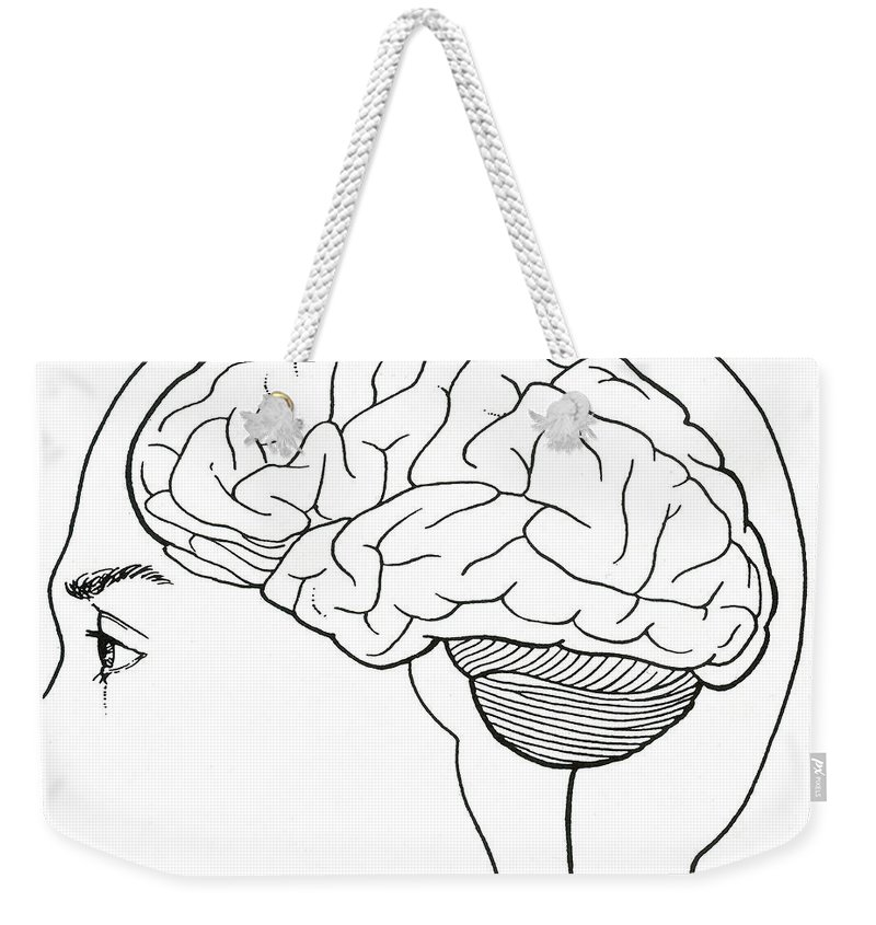 Science Weekender Tote Bag featuring the photograph Brain by Science Source
