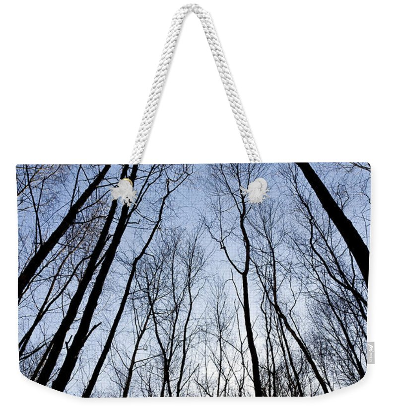 Tree Weekender Tote Bag featuring the photograph Trees In Epping Forest by David Pyatt