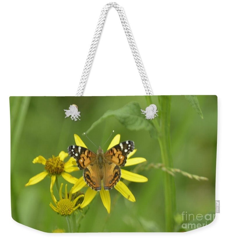 Butterfly Weekender Tote Bag featuring the photograph American Painted Lady by Donna Brown
