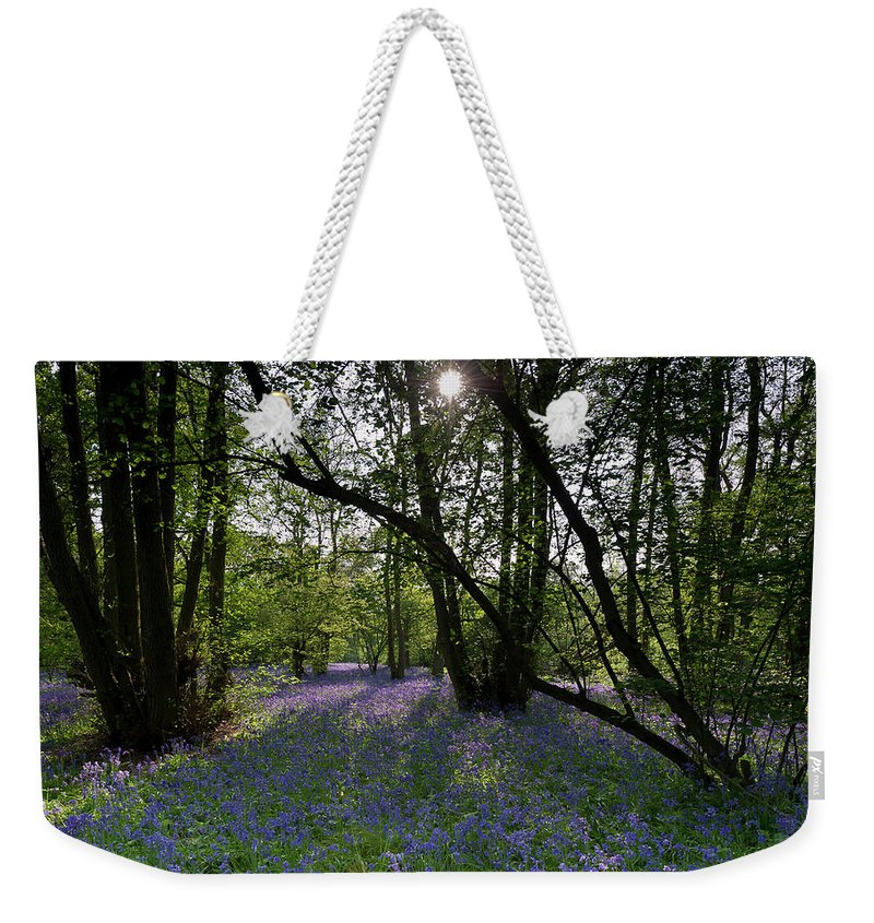 Bluebells Weekender Tote Bag featuring the photograph Bluebell Woods by Gary Eason
