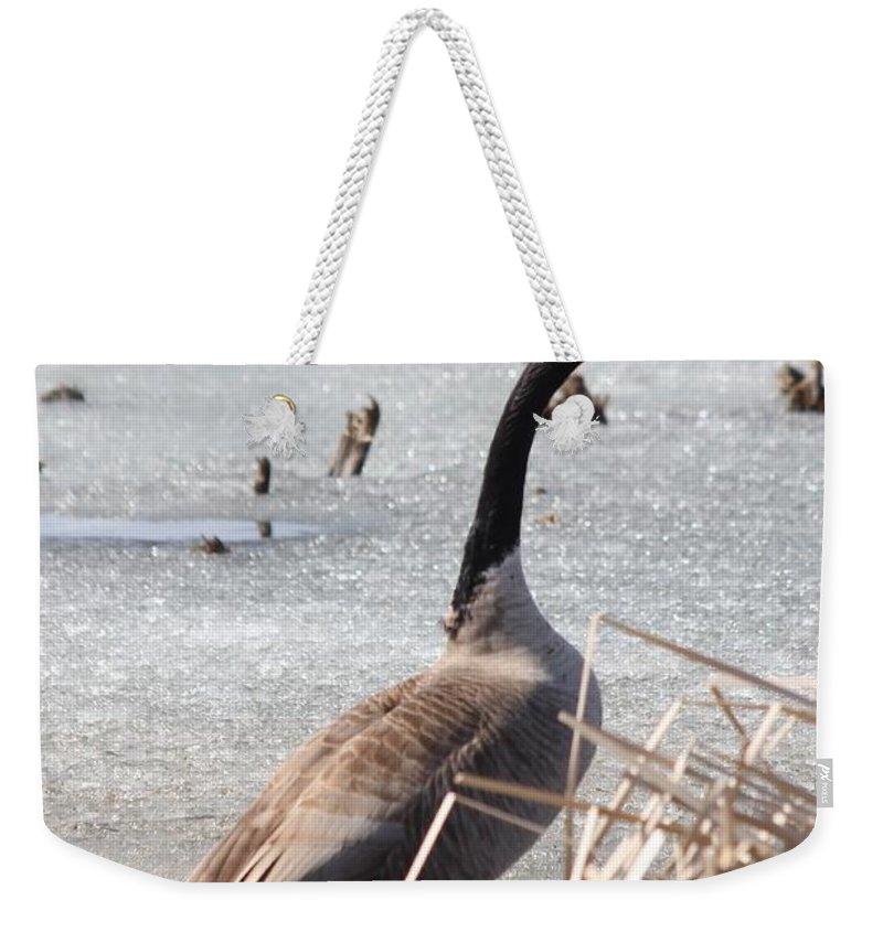 Goose Weekender Tote Bag featuring the photograph Call Of The Wild by Lori Tordsen