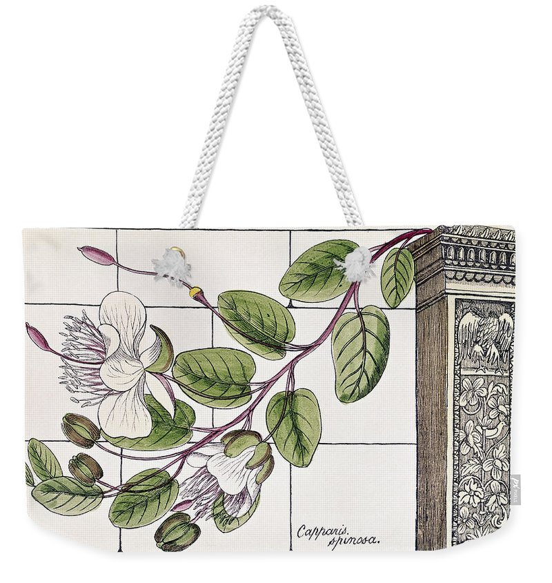 1855 Weekender Tote Bag featuring the photograph Colosseum: Flower by Granger