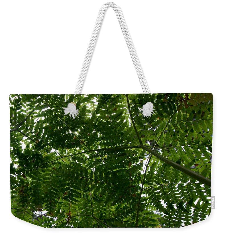 Lehtokukka Weekender Tote Bag featuring the photograph Ferns by Jouko Lehto