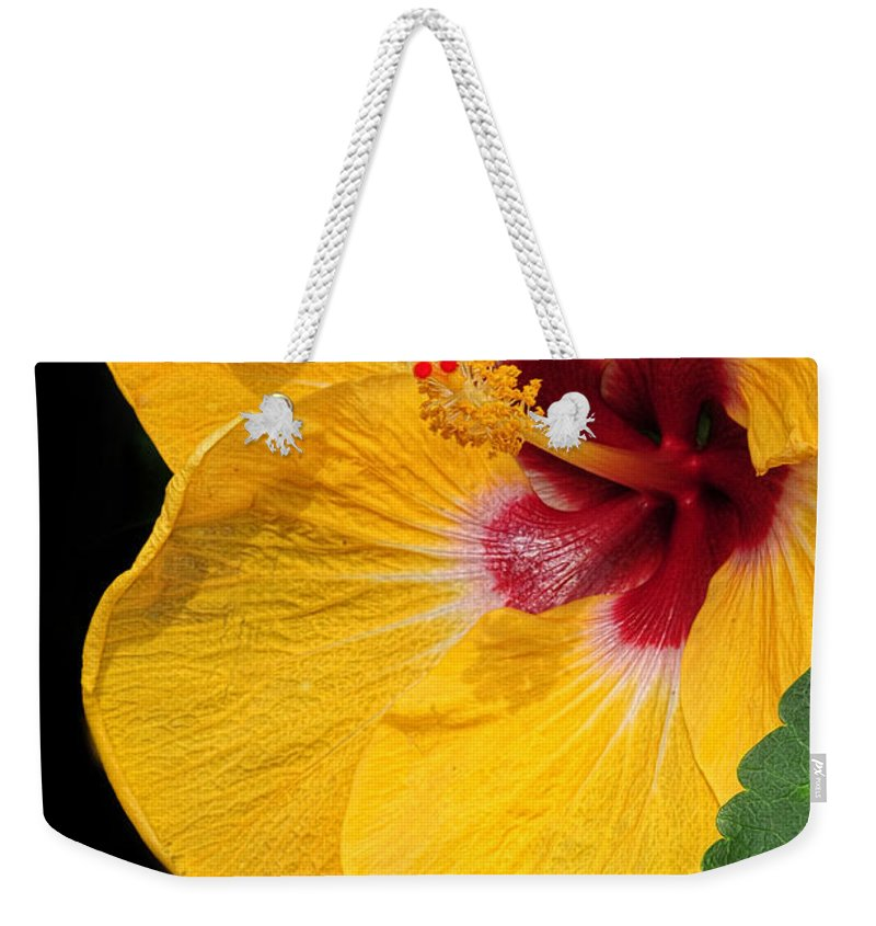 Hibiscus Weekender Tote Bag featuring the photograph Yellow Hibiscus by Dave Mills
