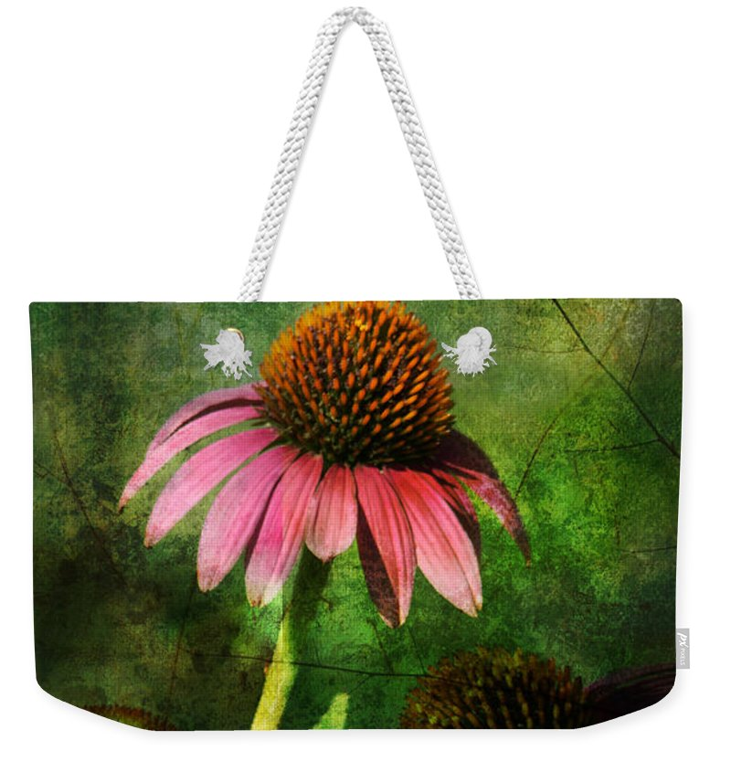 Coneflower Weekender Tote Bag featuring the photograph 3 Amigos Echinacea Coneflower Grunge Art by Kathy Clark
