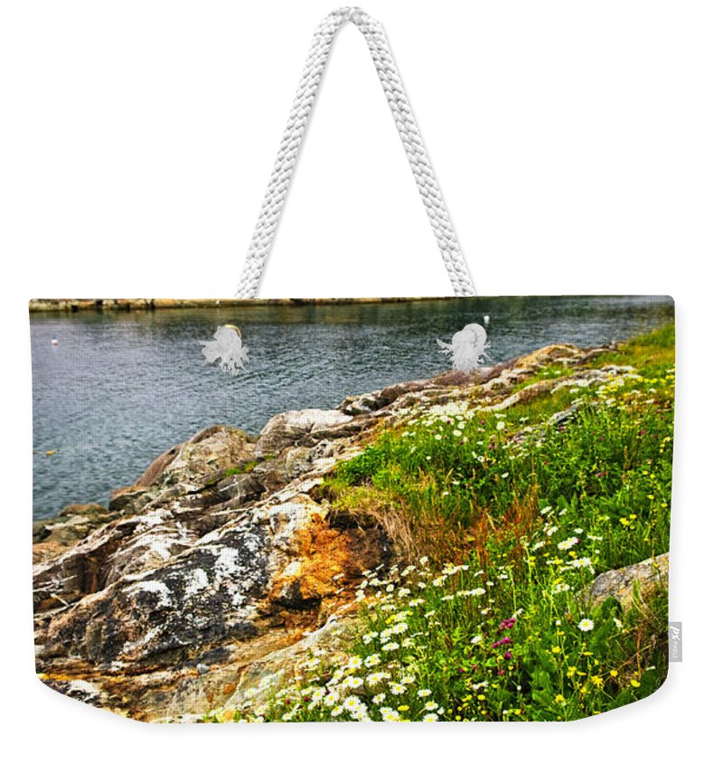 Coast Weekender Tote Bag featuring the photograph Atlantic Coast In Newfoundland by Elena Elisseeva