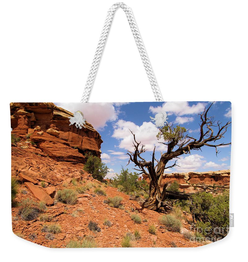Utah Landscape Weekender Tote Bag featuring the photograph Canyonlands Needles District by Adam Jewell