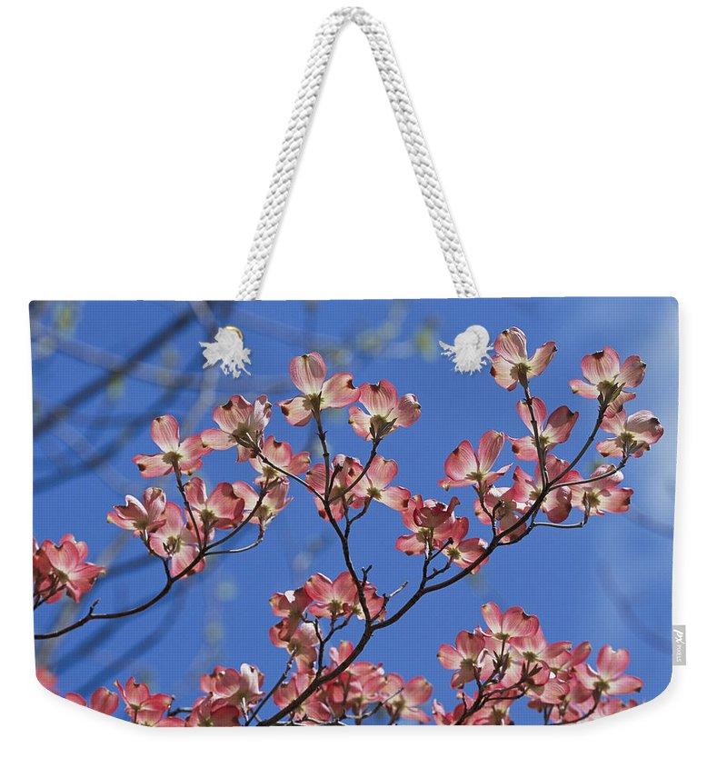 Plants Weekender Tote Bag featuring the photograph Close View Of Pink Dogwood Blossoms by Darlyne A. Murawski