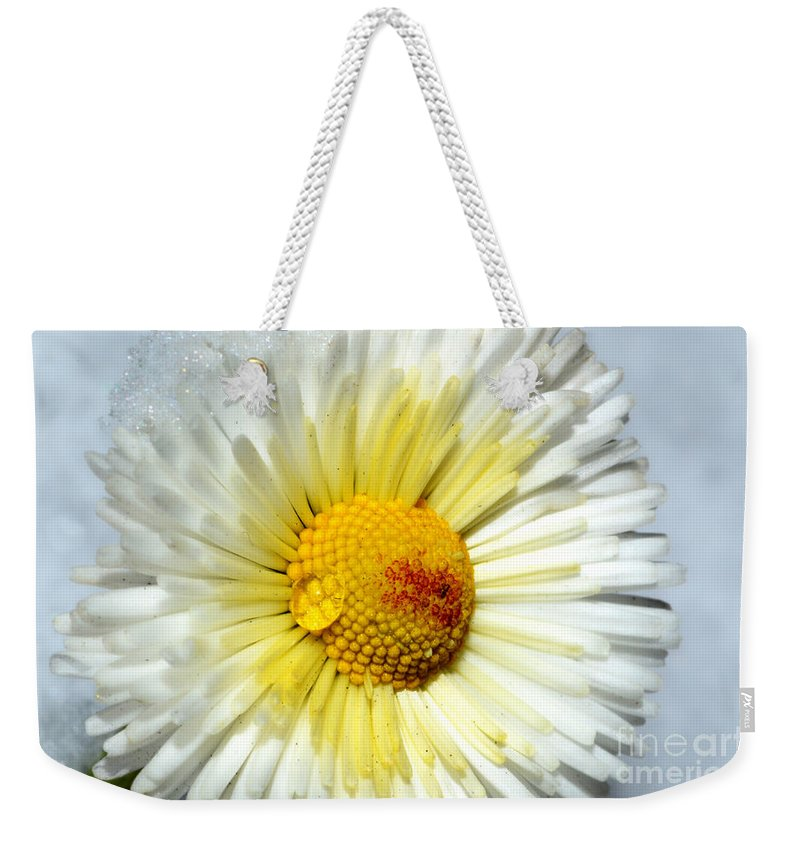 Daisy Weekender Tote Bag featuring the photograph Daisy Flower by Mats Silvan