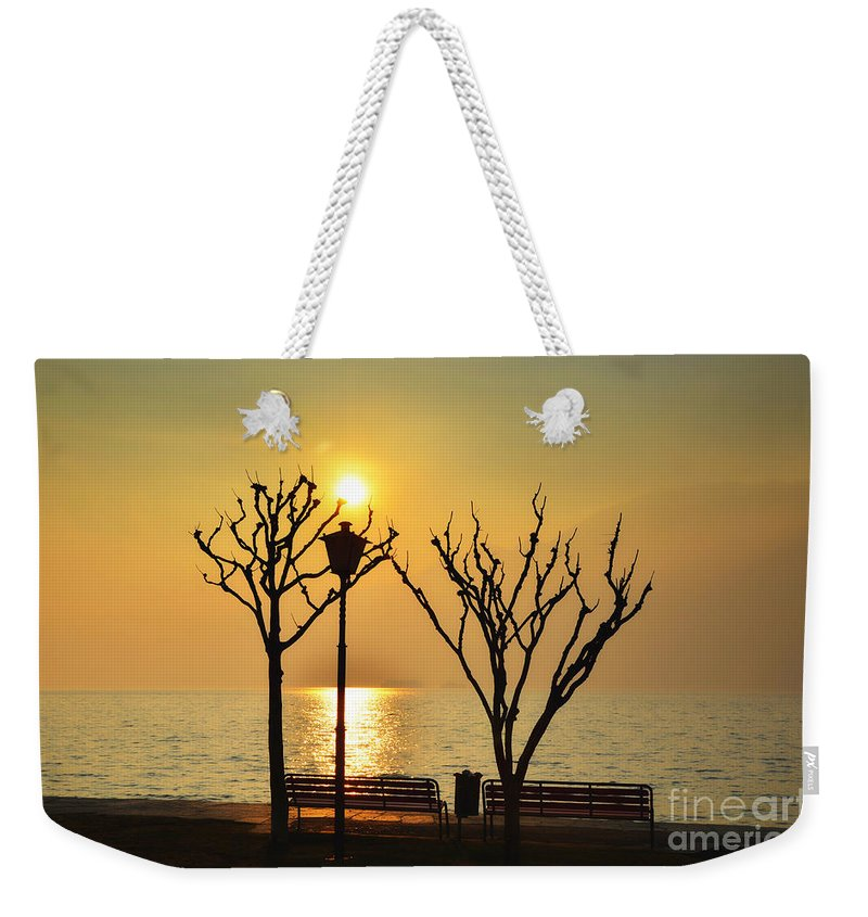 Tree Weekender Tote Bag featuring the photograph Sunlight Over A Lake by Mats Silvan