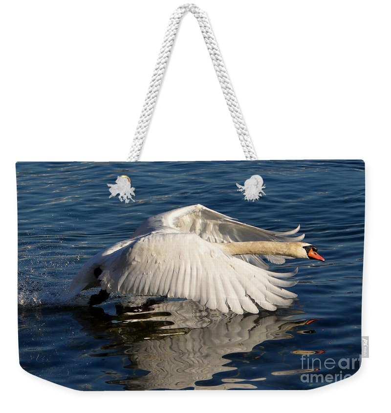 Swan Weekender Tote Bag featuring the photograph Swan by Mats Silvan