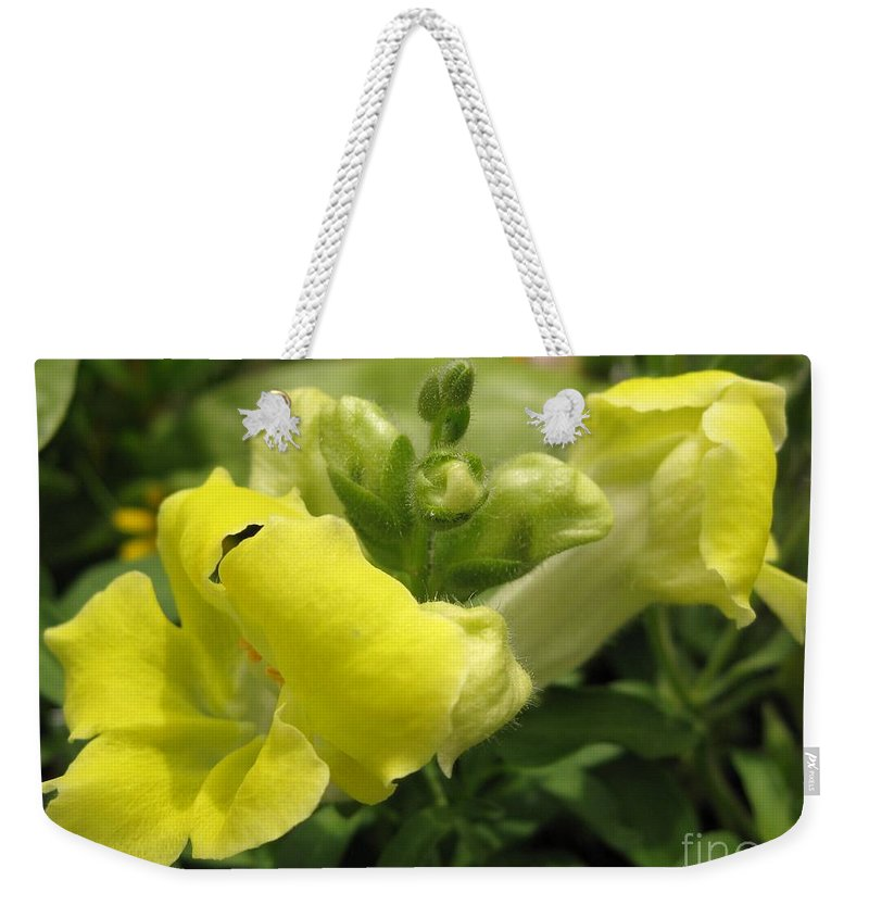 Snapdragon Weekender Tote Bag featuring the photograph Snapdragon From The Mme Butterfly Mix by J McCombie