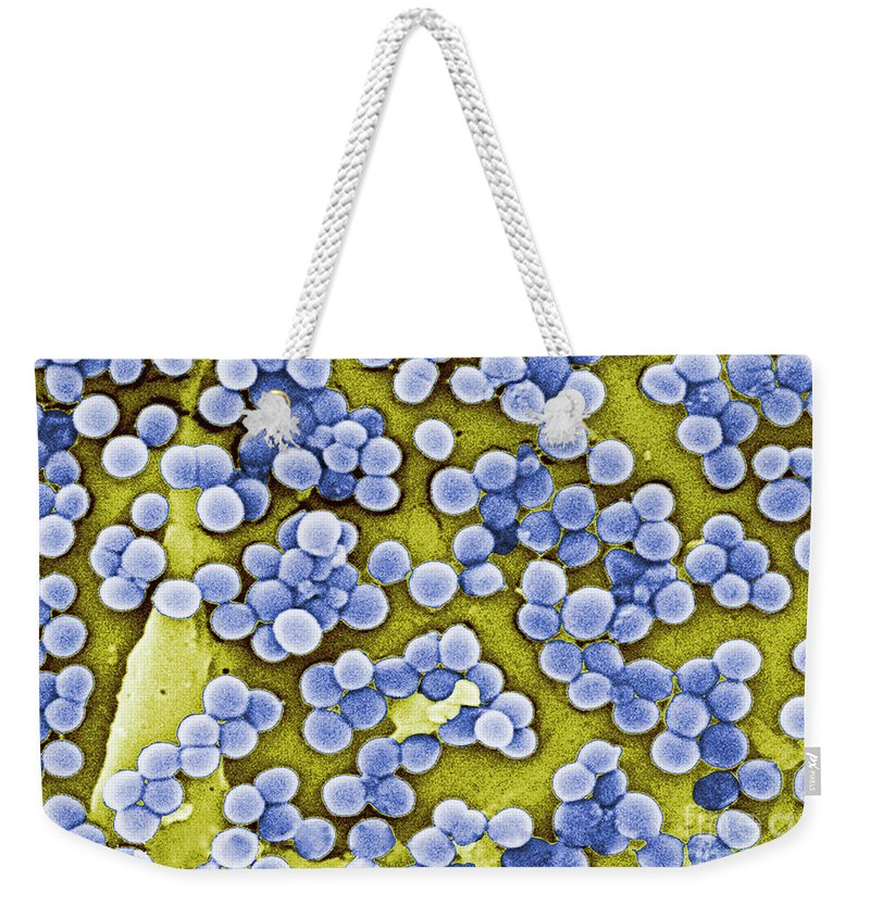Virulent Weekender Tote Bag featuring the photograph Methicillin-resistant Staphylococcus by Science Source