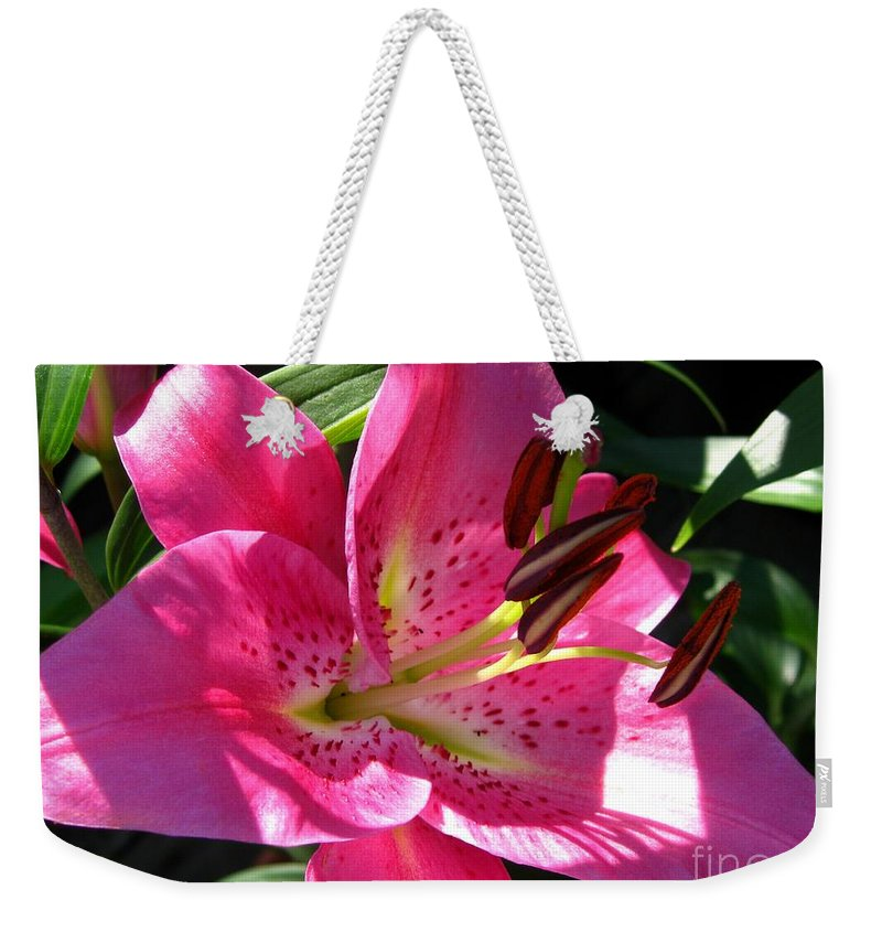 Dwarf Oriental Lily Weekender Tote Bag featuring the photograph Dwarf Oriental Lily Named Farolito by J McCombie