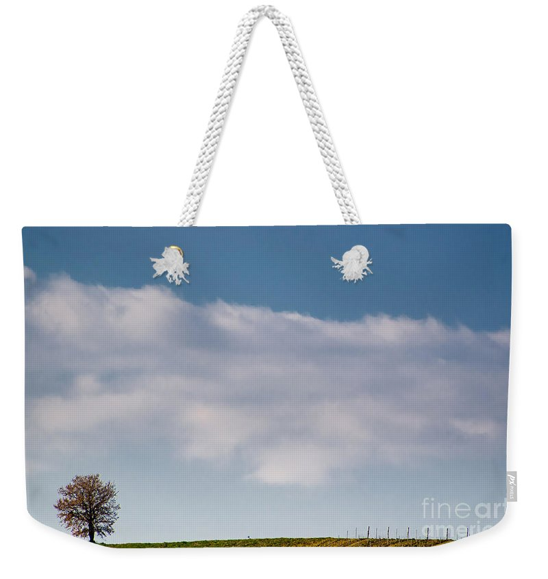 Tree Weekender Tote Bag featuring the photograph Lonely Tree by Mats Silvan