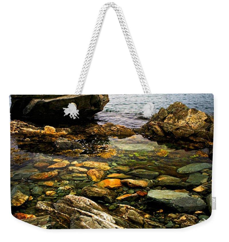 Coast Weekender Tote Bag featuring the photograph Atlantic Coast In Newfoundland by Elena Elisseeva