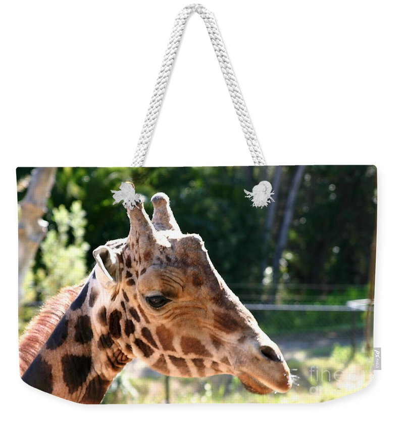 Africa Weekender Tote Bag featuring the photograph Baringo Giraffe by Henrik Lehnerer