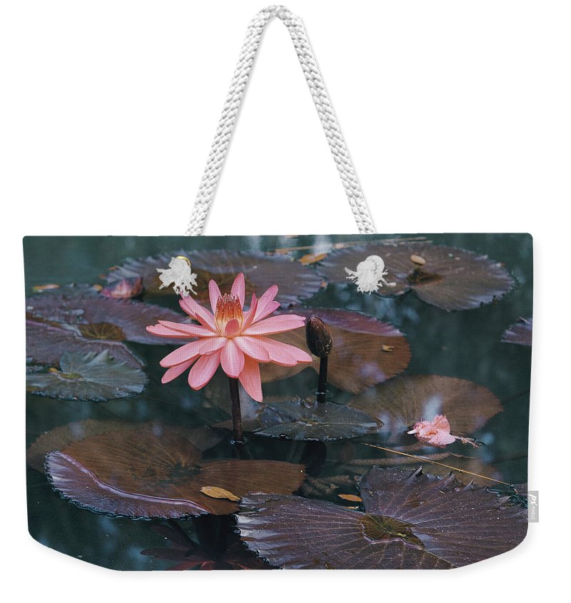 mc Kee Garden Weekender Tote Bag featuring the photograph Untitled by B. Anthony Stewart