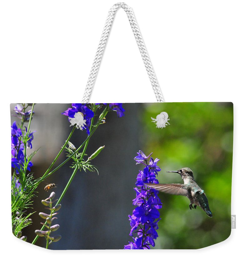 Hummers Weekender Tote Bag featuring the photograph A Bird And A Bee by Lynn Bauer