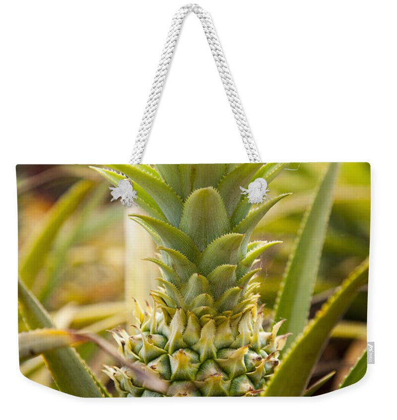 Tainung Weekender Tote Bag featuring the photograph A Close View Of A Tainung Pineapple by Taylor S. Kennedy