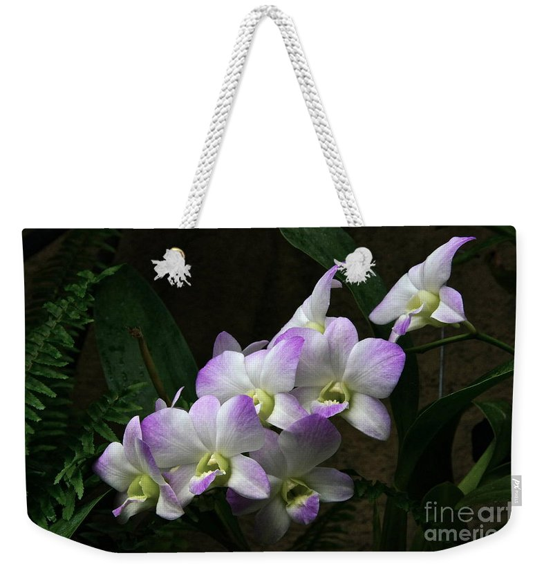 Orchids Weekender Tote Bag featuring the photograph A Flight Of Orchids by Byron Varvarigos