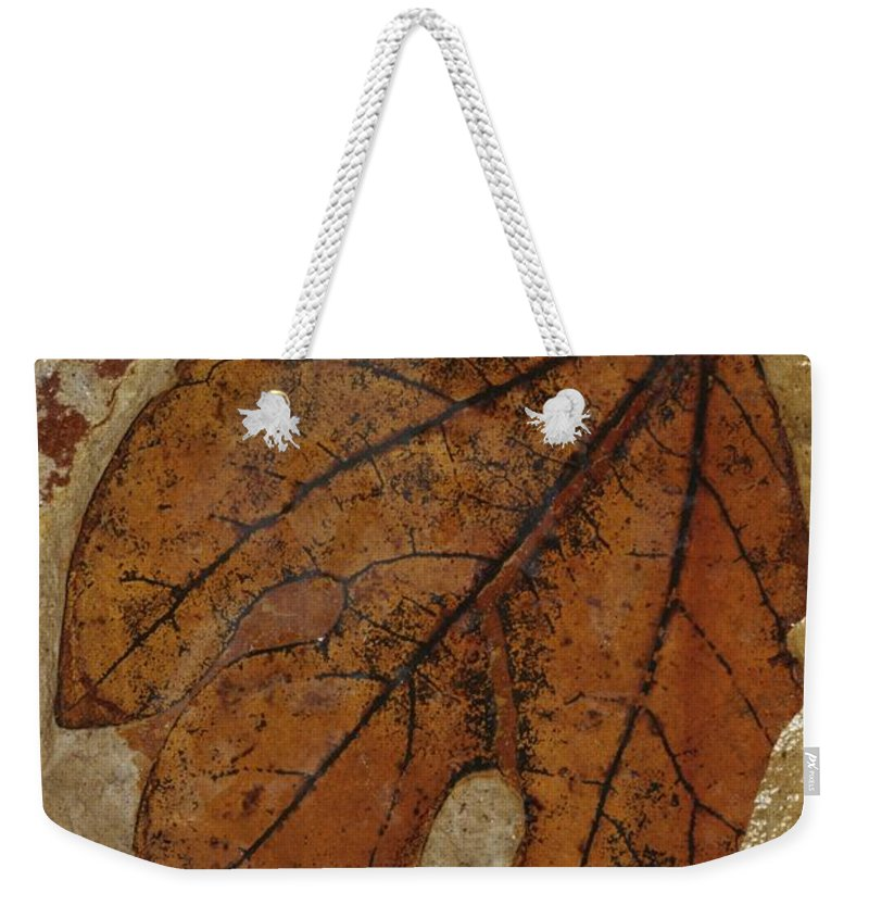 North America Weekender Tote Bag featuring the photograph A Fossilized Sassafras Leaf by Jonathan Blair