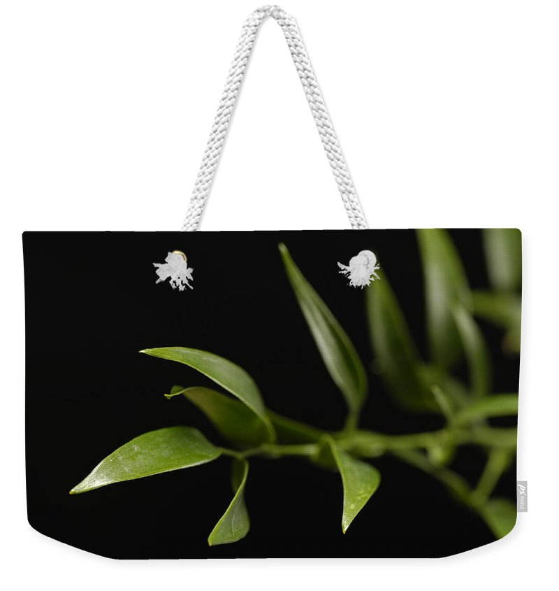 Photography Weekender Tote Bag featuring the photograph A Italian Ruscus Ruscus Aculeatus by Joel Sartore