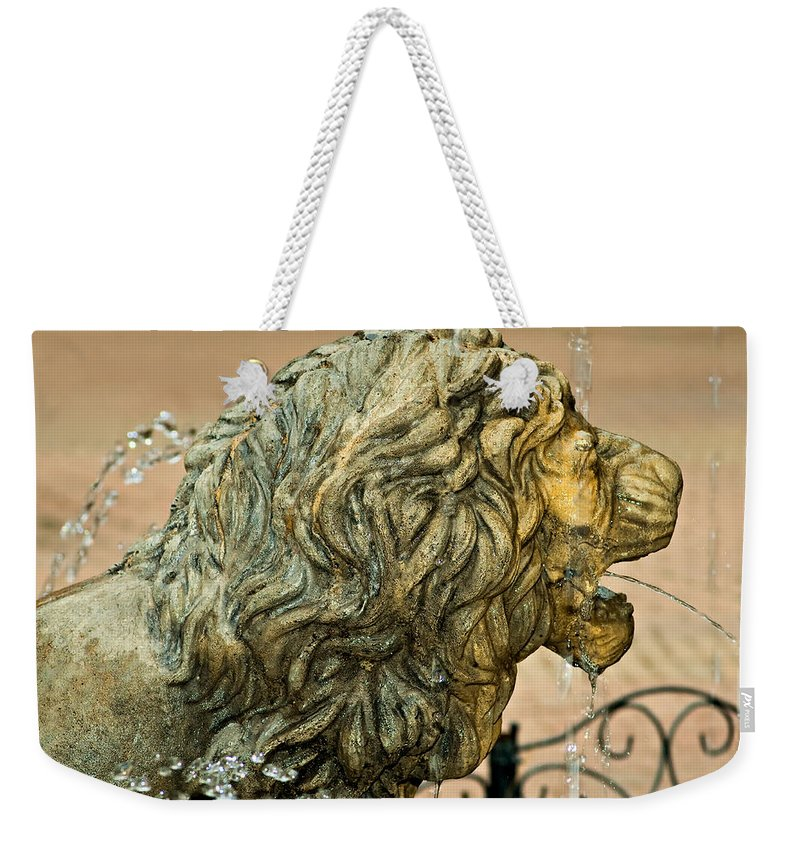 Lion Weekender Tote Bag featuring the photograph A Lion In Summer by Steve Harrington