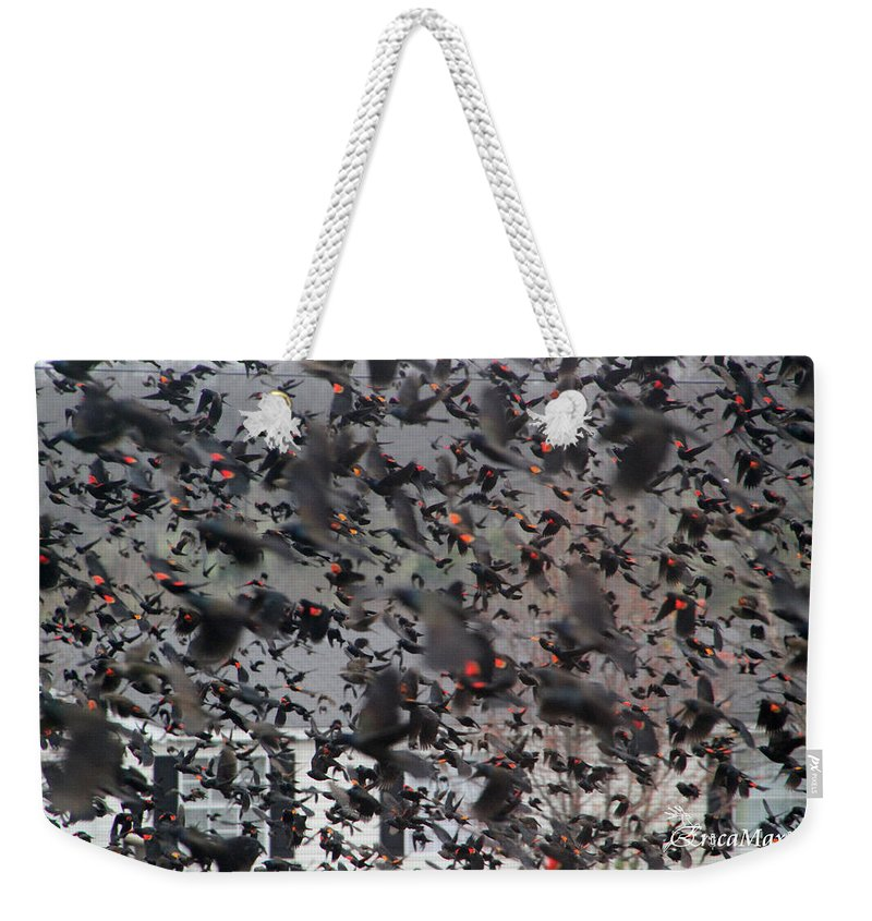 Sooc Weekender Tote Bag featuring the photograph A Mob Of Red-winged Blackbirds by Ericamaxine Price
