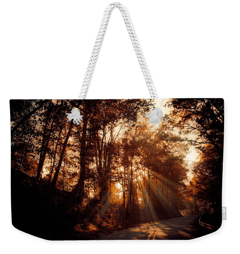 Ray Weekender Tote Bag featuring the photograph A New Dawn by Trish Tritz