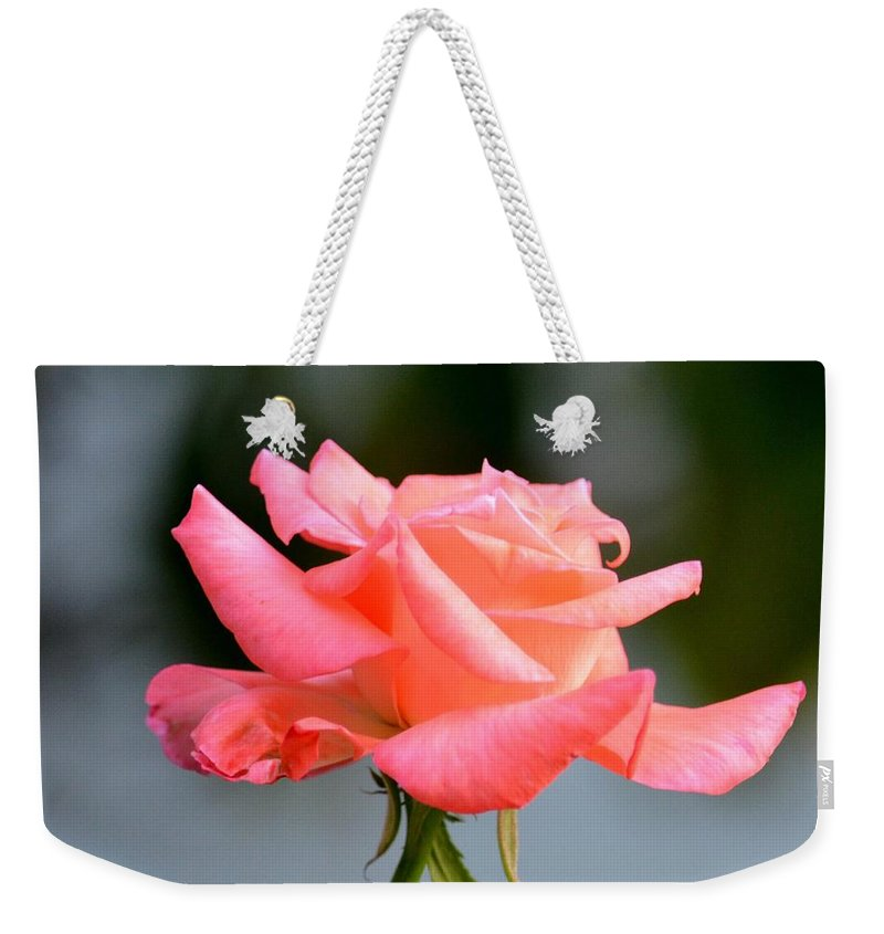 Peachy Weekender Tote Bag featuring the photograph A Peachy Pink Delight by Maria Urso