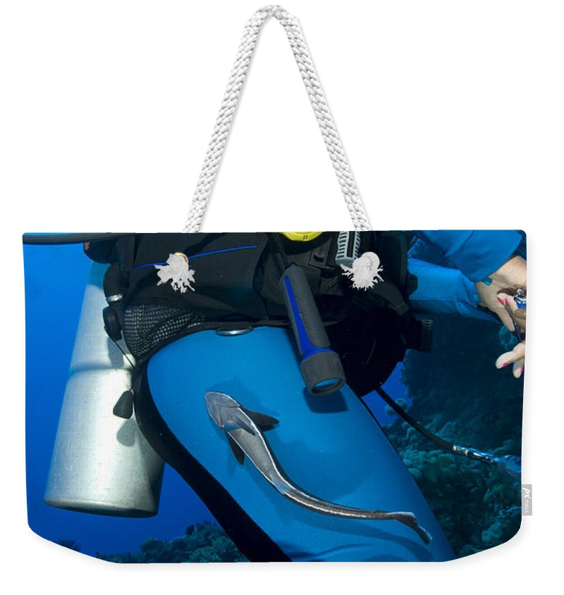 Osteichthyes Weekender Tote Bag featuring the photograph A Remora Attached To A Diver, Kimbe by Steve Jones