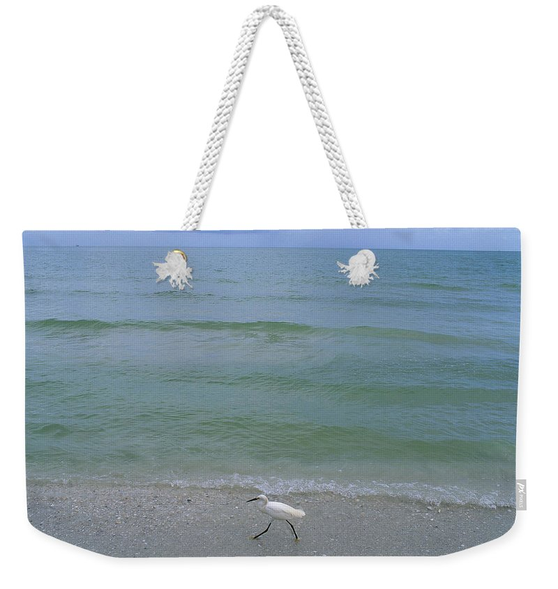 Geography Weekender Tote Bag featuring the photograph A Snowy Egret Walks Along The Beach by Joel Sartore
