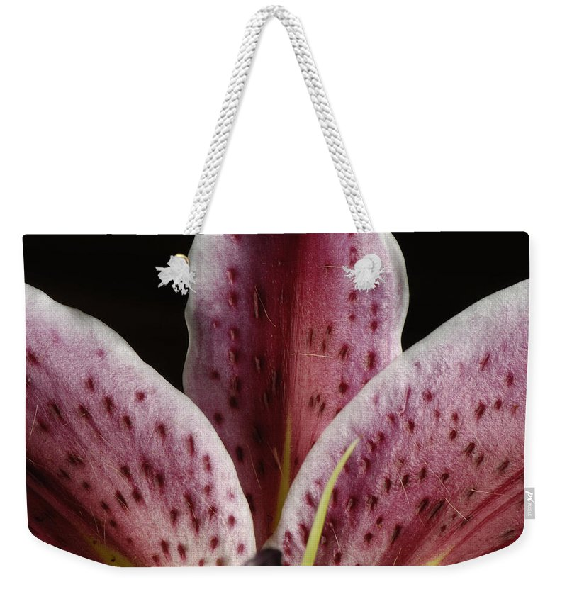 Photography Weekender Tote Bag featuring the photograph A Stargazer Lily Lilium Orientalis by Joel Sartore
