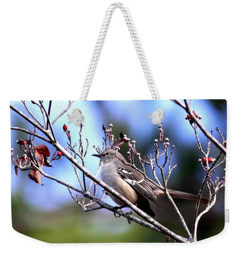 Photos Weekender Tote Bag featuring the photograph A Touch Of Red by Travis Truelove
