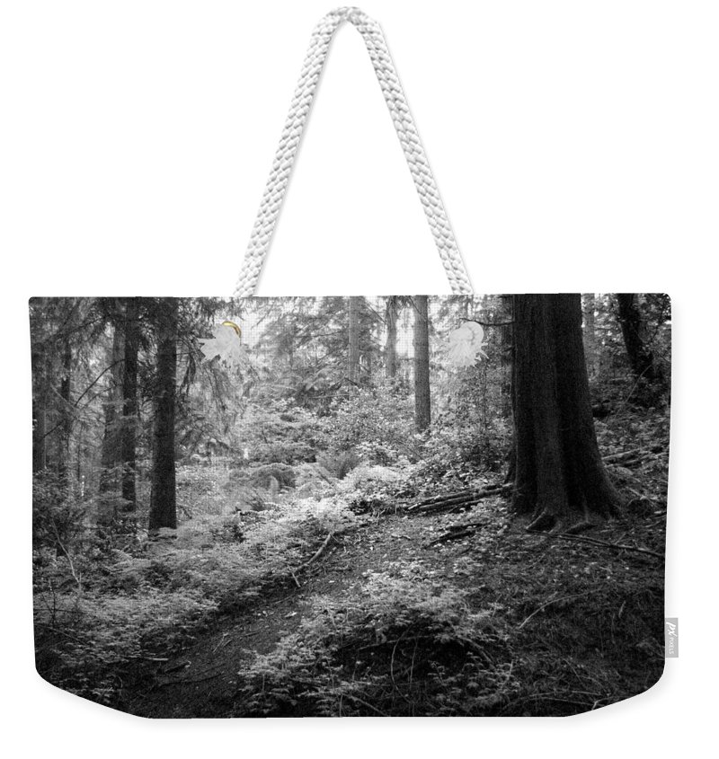 Path Weekender Tote Bag featuring the photograph A Walk In The Woods by Kathleen Grace