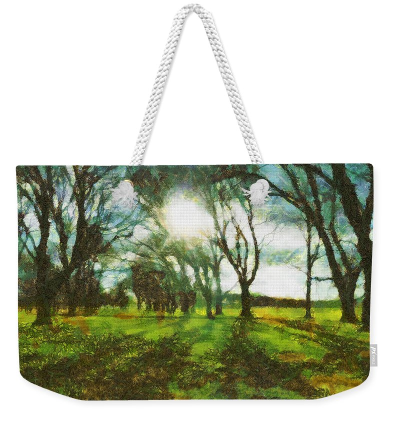 Walk Weekender Tote Bag featuring the photograph A Winter's Walk by Steve Taylor