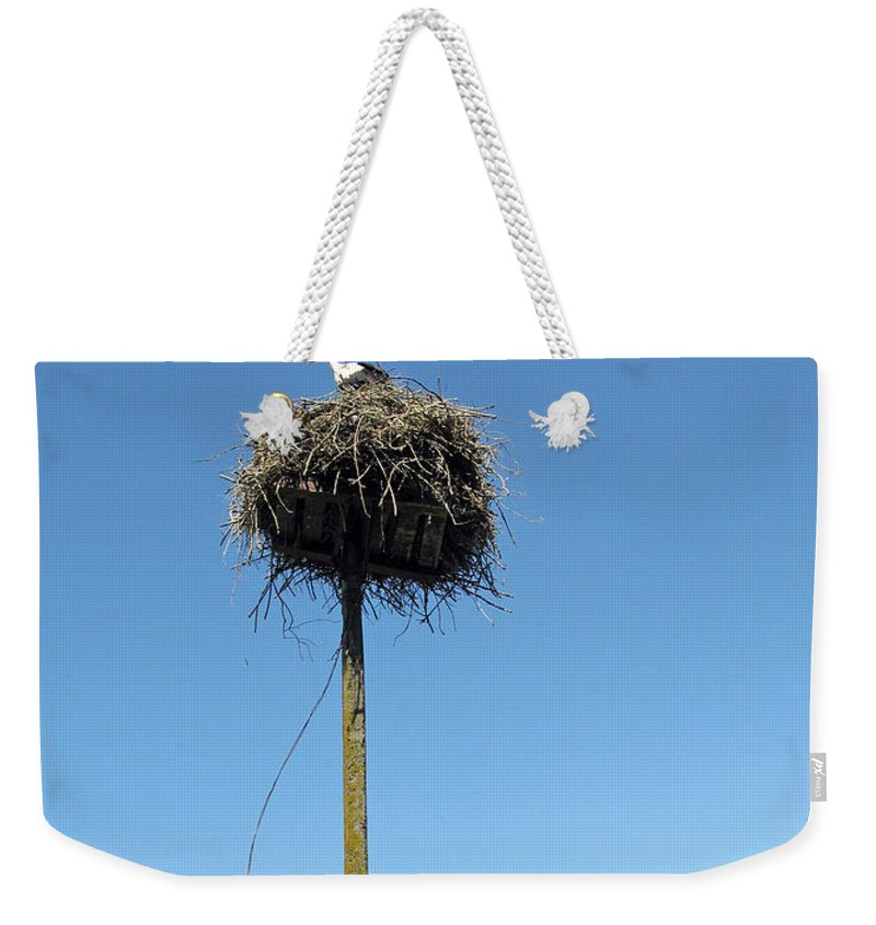 Stork Weekender Tote Bag featuring the photograph Above The Tree Tops by Ausra Huntington nee Paulauskaite