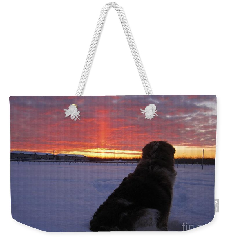 Winter Weekender Tote Bag featuring the photograph Admiring The Sunset by Alanna DPhoto