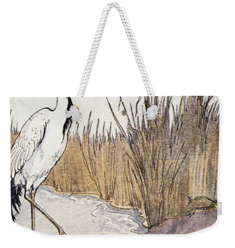 Aesop Weekender Tote Bag featuring the photograph Aesop: Frogs Wish For King by Granger
