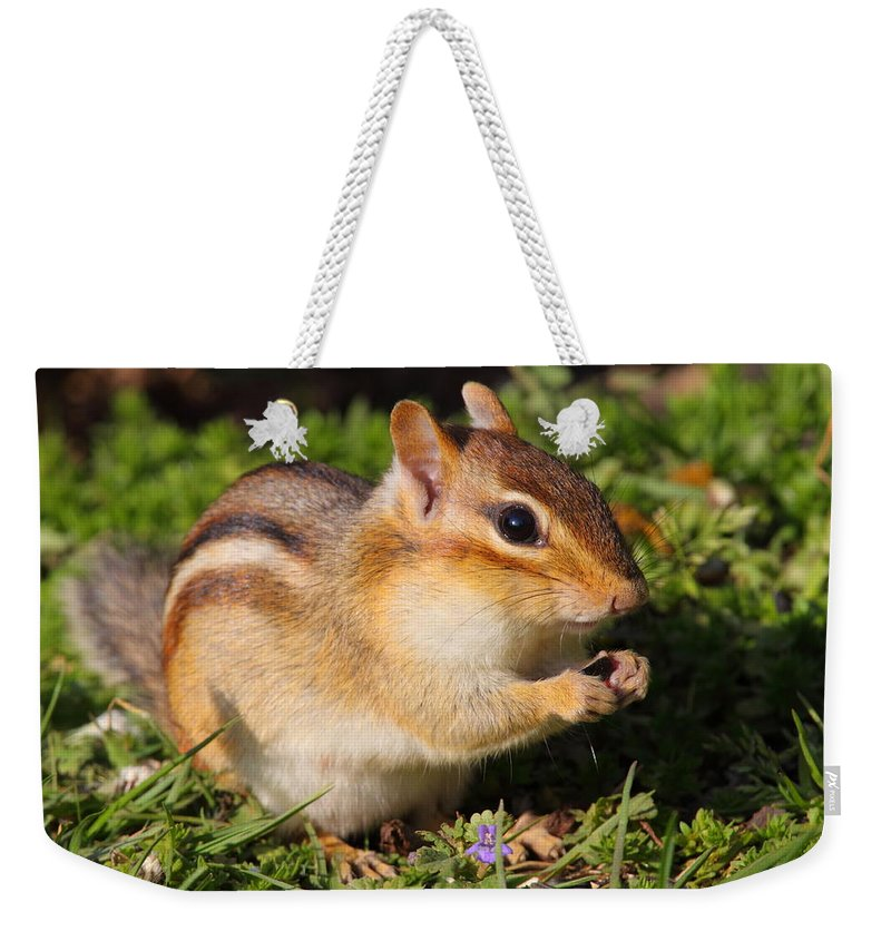 Chipmunk Weekender Tote Bag featuring the photograph Afternoon Snack - Eastern Chipmunk by Bruce J Robinson