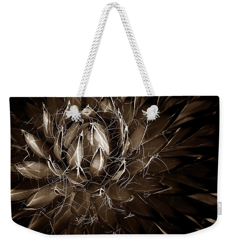 Agave Weekender Tote Bag featuring the photograph Agave by Xueling Zou